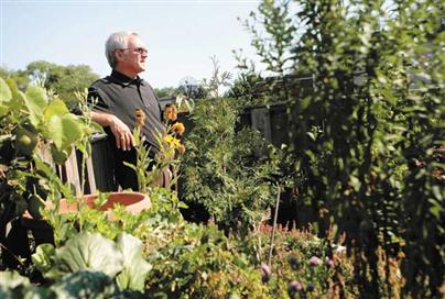 Councillor Joe Pantalone built his green roof in the 1970s. long before the concept was trendy.