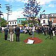 20090925 Paul E Garfinkel Park 3